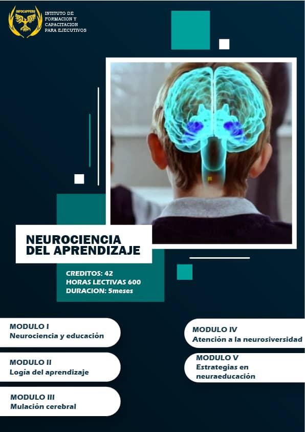 Neurociencia del Aprendizaje